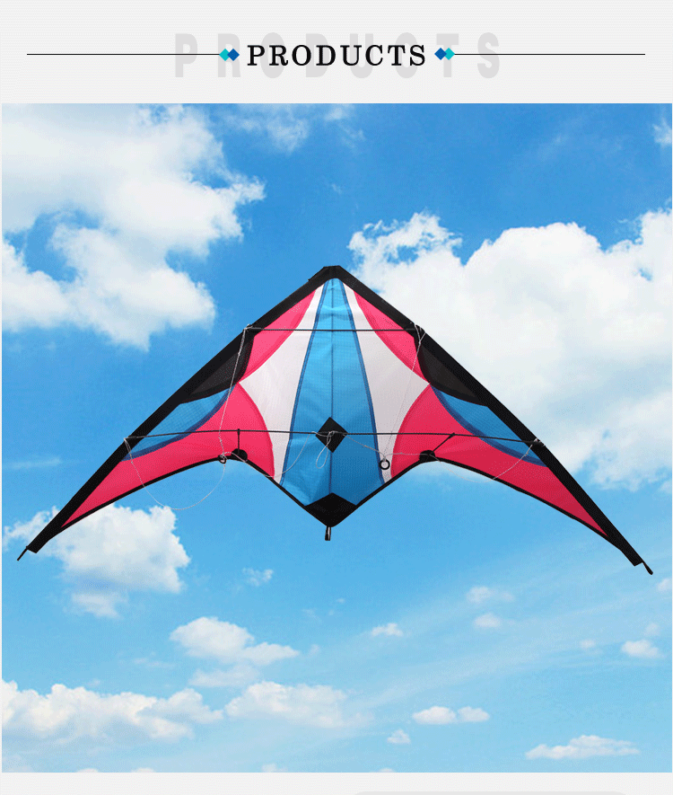 High quality Easy Flying  outdoor  playing training  paraglider  sport stunt  dual line delta  Kite