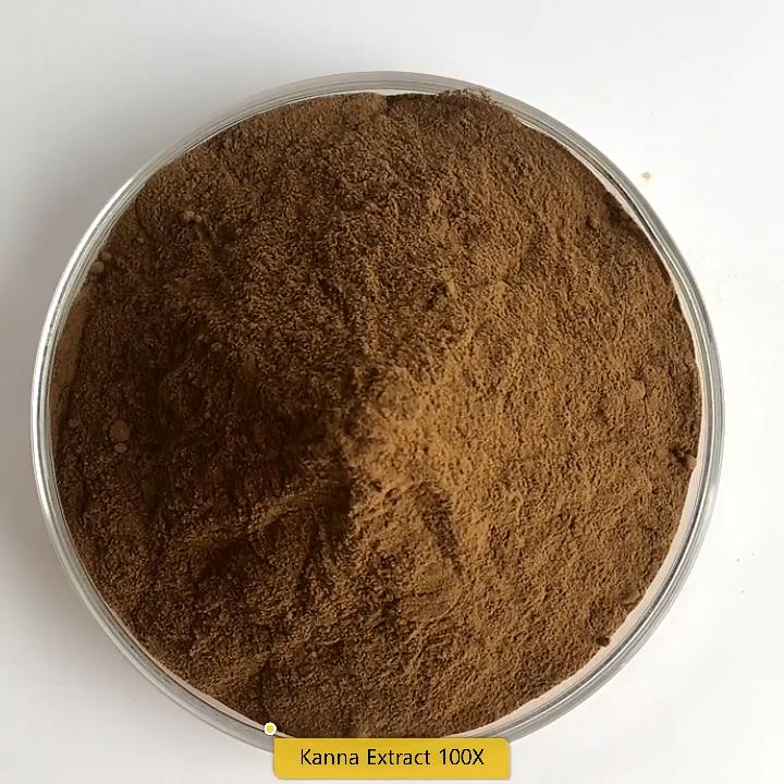 Migliore Qualità Kanna Estratto Sceletium Tortuosum Extract100: 1/200: 1