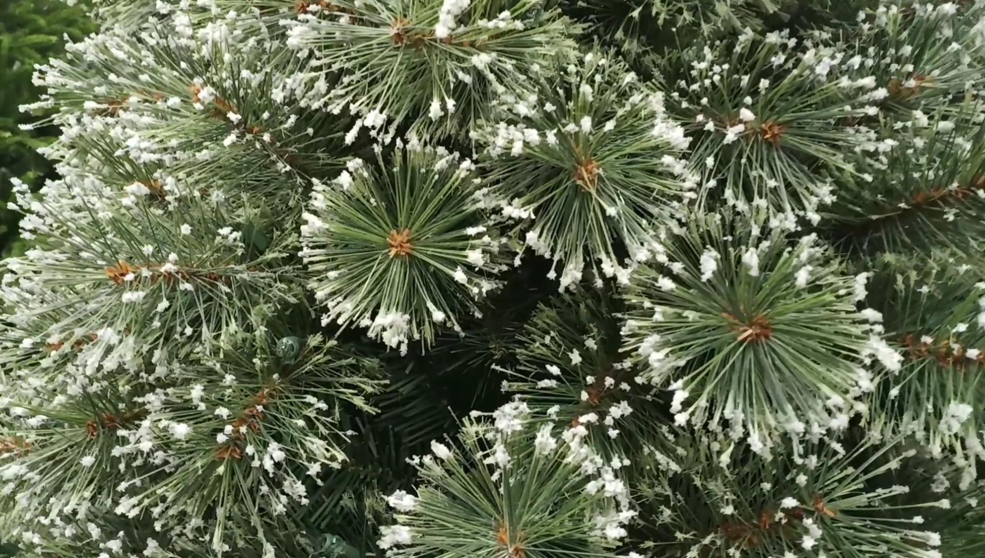 Künstliche Plastik kiefern nadeln Ast für die Herstellung von Weihnachts baum