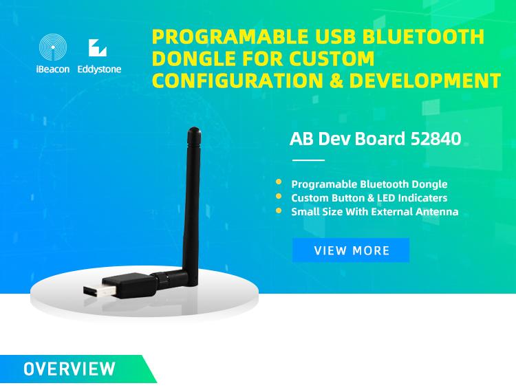 Wholesale Programmable Bluetooth USB Dongle 52840 development kit