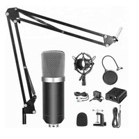 BM-800+ External 3.5Mm Clip-On Microphone Recorder Made In China