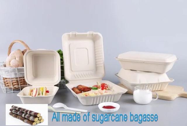 קני סוכר Compostable שולחן חד פעמי קנה סוכר פסולת נייר צלחות מתכלה