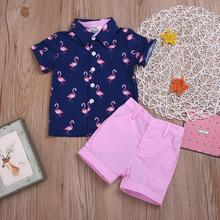 2-6Years Peuter <span class=keywords><strong>Baby</strong></span> Jongens <span class=keywords><strong>Kleding</strong></span> Kleine Kinderen Roze Flamingo Button Down Shirts Shorts Set 2 Stuks Zomer Outfits M90709