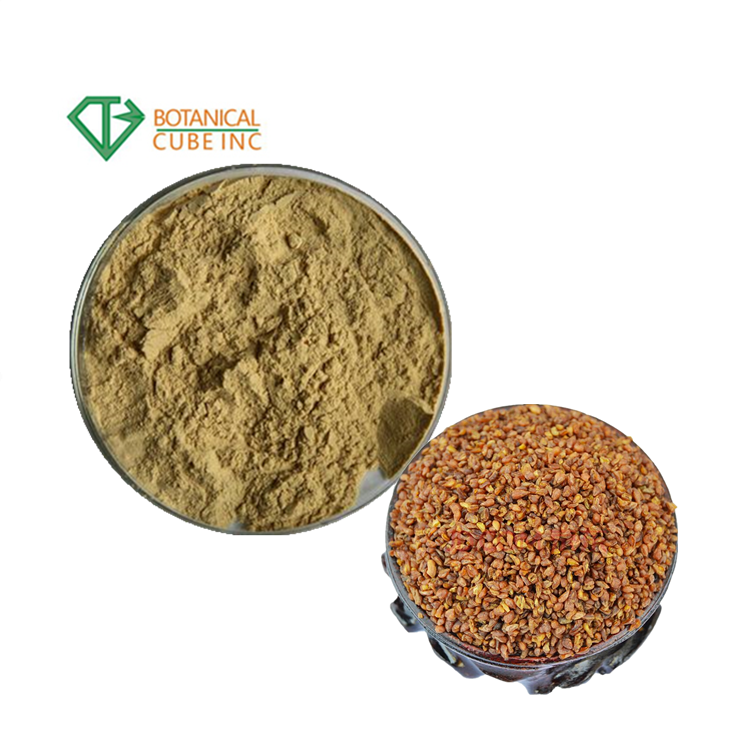ISO Approved wholesale Cistanche Tubulosa Extract powder 3%-10% Acteoside powder