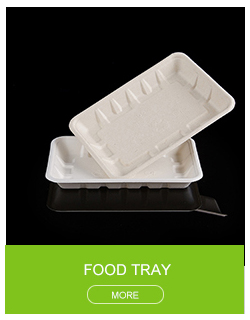 "Hot sales biodegradable Compostable Sustainable sugarcane clamshell 9"" bagasse hamburger box food container"