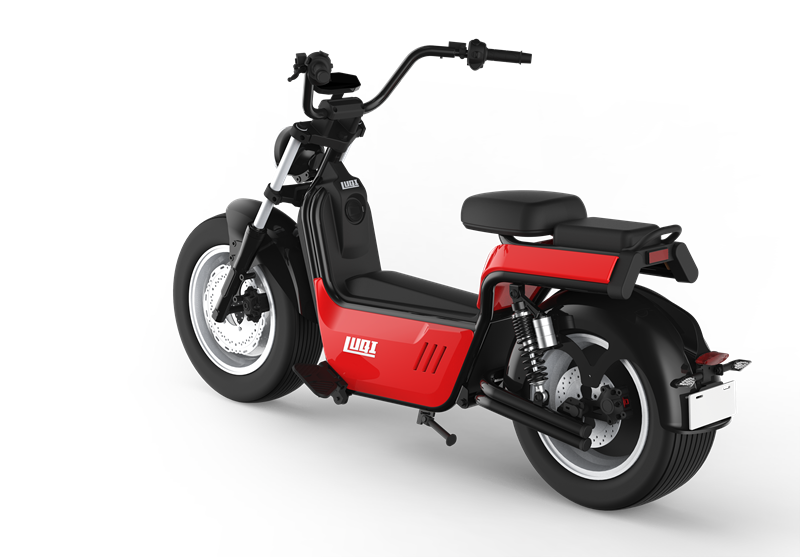 Hot selling in Europe 4000w citycoco europe tire fat electric scooter