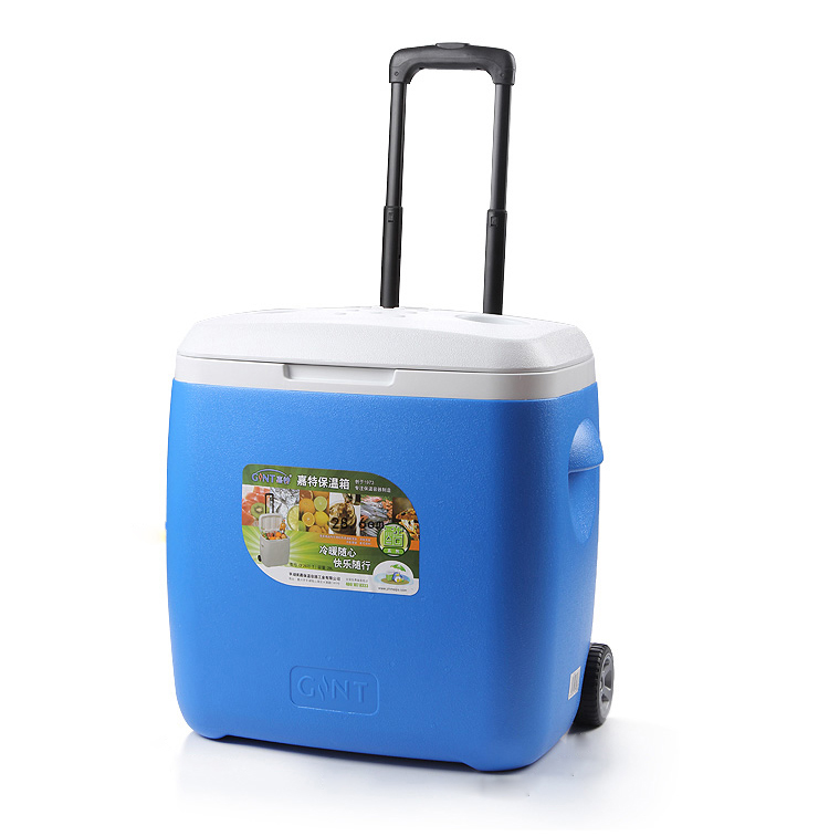 Gint 28 Liter Ice Cooler Box Kecil Kulkas Mini
