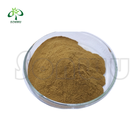 Sonwu damiana extract dry leaf and OEM pure damiana extract powder