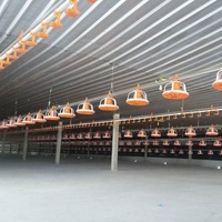 Poultry Broiler Pan Feeding System for chicken farm house floor ground Automatic feed Equipment