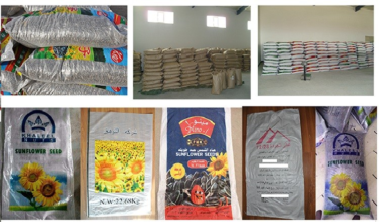 Hot sale new China sunflower seeds