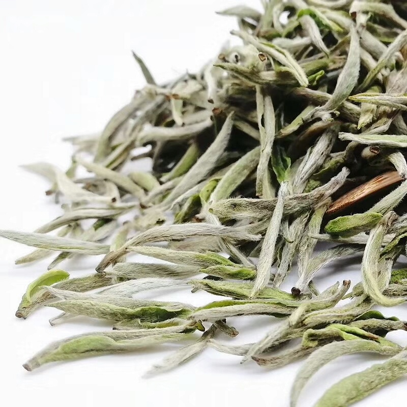 Highest Grade Silver Needle White Tea From Fujian - 4uTea | 4uTea.com