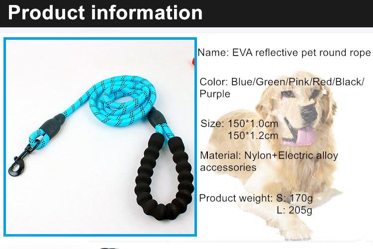 Laisse à chaîne et faisceau pour chien, harnais ajustable, en plomb amazon, pour chiot, vente directe depuis l'usine