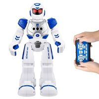 New arrival intelligent smart remote control walking toy rc robot