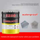 Polymer HGLT Primary Waterproof Weather Resistance Durability Building Coating Polymer Cement Mortar