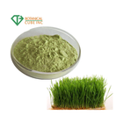 Organic barley grass powder in bulk barley grass juice powder