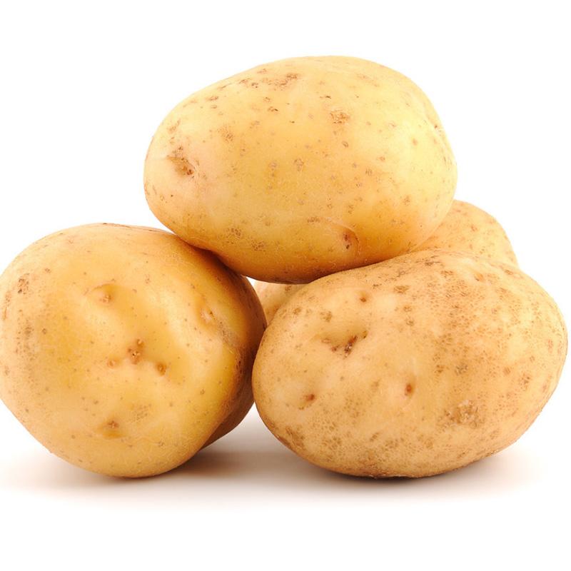 Pommes de terre fraîches fraîches, vente en gros, exportation, 2020