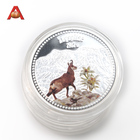 Custom Commemorative Silver Best Quality Metal Coins