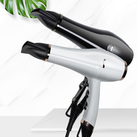 2020 New Arrivals Silent 12V DC Motor One Step Hair Dryer Professional Max Temperature Ionic Hairdryer 2300W Ceramic Blow Dryer