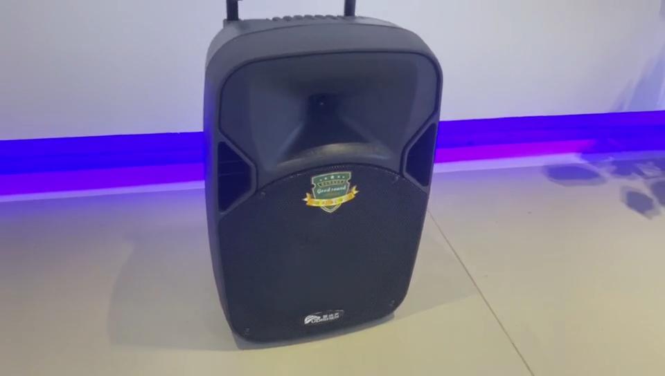 LS-12A 12 inch Draagbare Trolley Bluetooth Speaker