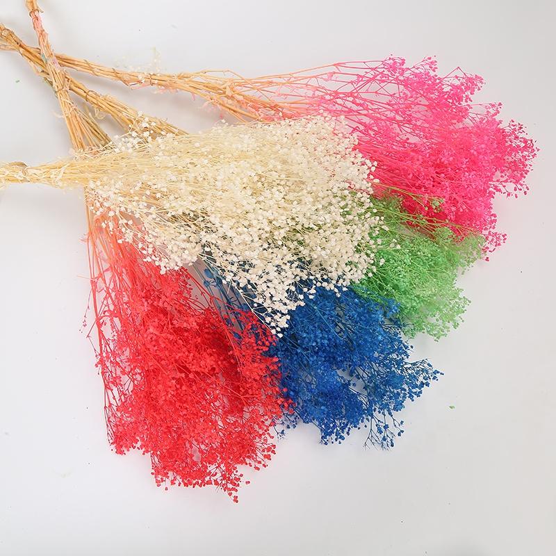 ขายส่งแห้ง Dream Star Soft สี preserved Babys breath ดอกไม้สำหรับงานแต่งงานตกแต่ง