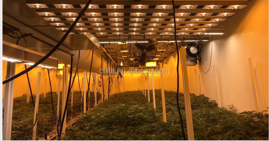 Alta PPF interior À Prova D' Água levou cresce a luz levou crescer luz cob 50w levou chip para hytroponics
