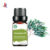99% Eucalyptus 100% Pure Essential Oil for Refreshing energizing