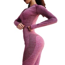 wholesale  Seamless Women Yoga Set And Sports Clothing