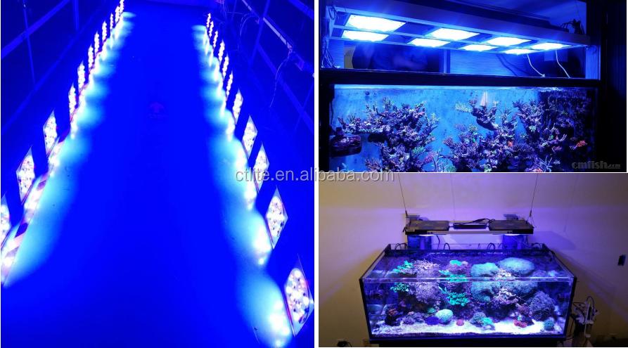 Chinese G4 fabriek aquarium cob intelligente led aquarium licht koraalrif aquarium led verlichting coral reef