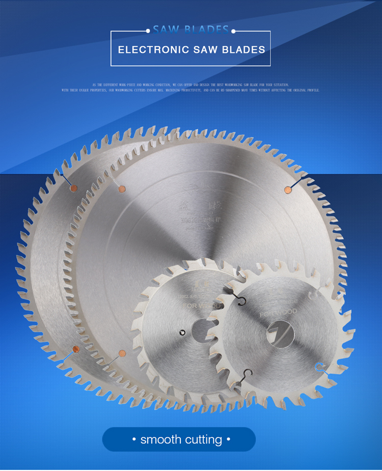 Saw Blades Adjustable Scoring Blades 120mm/12T X 2 X 22mm Bore