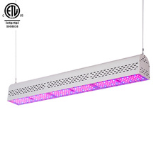 Nieuwe Model Waterdichte IP67 Plant Lineaire Led Grow Light 50W 100W <span class=keywords><strong>150W</strong></span> 200W 300W Voor indoor Groeiende