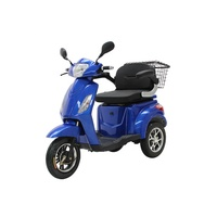 Custom Adults Passenger Three Wheel 1500w Eec Electric Tricycle For Disabled