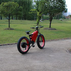 Off Road E Bike With Fat Tire Lithium-ion Batteries Bicycles Top 1 Electric Bikes 72v 5000w in china