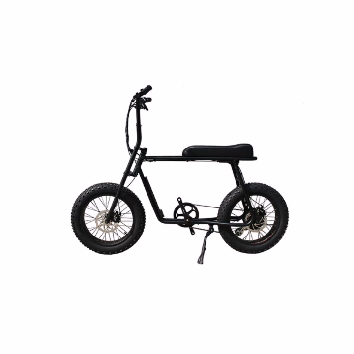 2020MINMAX di alta qualità 48v 750w bici elettrica spiaggia grasso bici con motore posteriore 20 pollici, grasso bici Elettrica OEM RANGE100KM