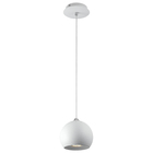Pendant Indoor Lighting Pendant