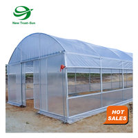 low cost Aquaponic Vegetables other pe Plastic tunnel film single-span greenhouse