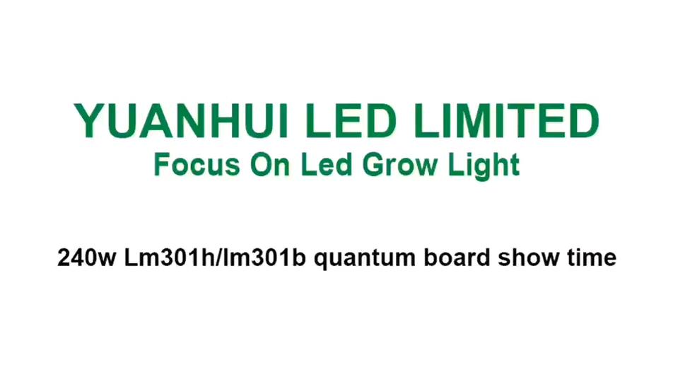 Shenzhen Yuanhui kuantum Led Samsung lm301h 240w ışık büyümeye yol açtı