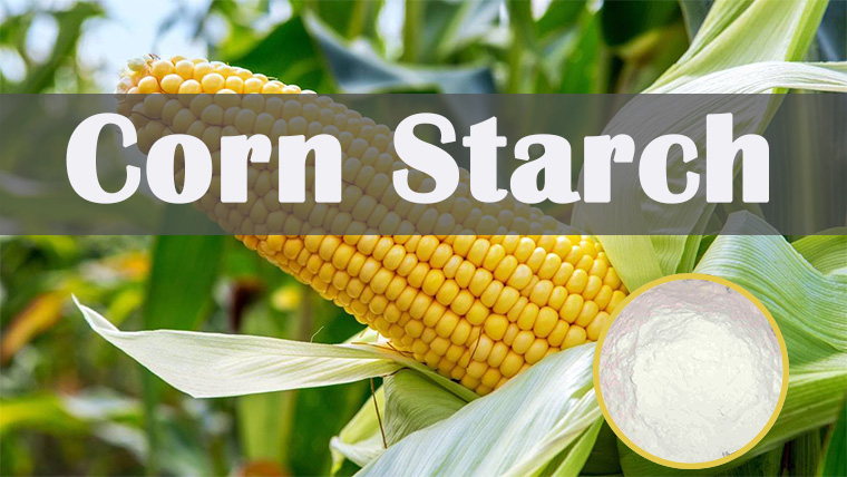 Factory Supply Corn Starch Powder  Food Grade Raw Material Corn Starch