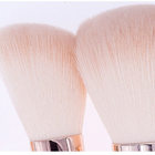 Loli Powder Brush 2020 Hot Selling 9pcs Loli Powder Makeup Brushes Wooden Handle Foundation Blending Makeup Brush Set