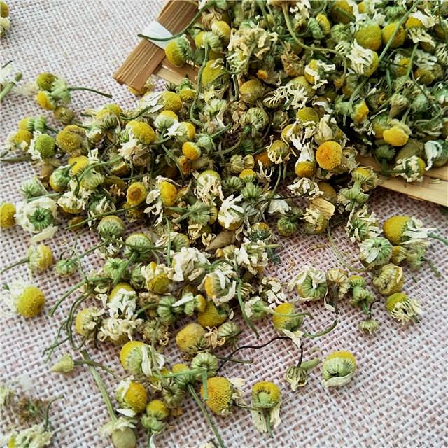 Yang gan ju Manufacturer Wholesale natural dry organic chamomile flower - 4uTea | 4uTea.com