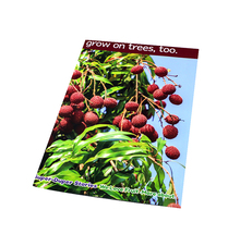 Cheap Full Color Custom Size Art Paper Poster Printing,Bulk Poster Printing,Poster Service For Advertising