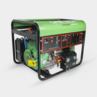 Gretech 2.5kw 240V electric start 2 fuels in 1 LPG NG gas power generator gas engine generator