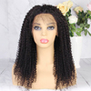 Brazilian Virgin Natural Color Curly Lace Frontal Afro Kinky Curl Human Hair Wig With 13*6 deep parting space Pre plucked