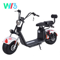 EEC COC citycoco 2000w 3000w europe warehouse 2019 electric scooter with fat bike tire