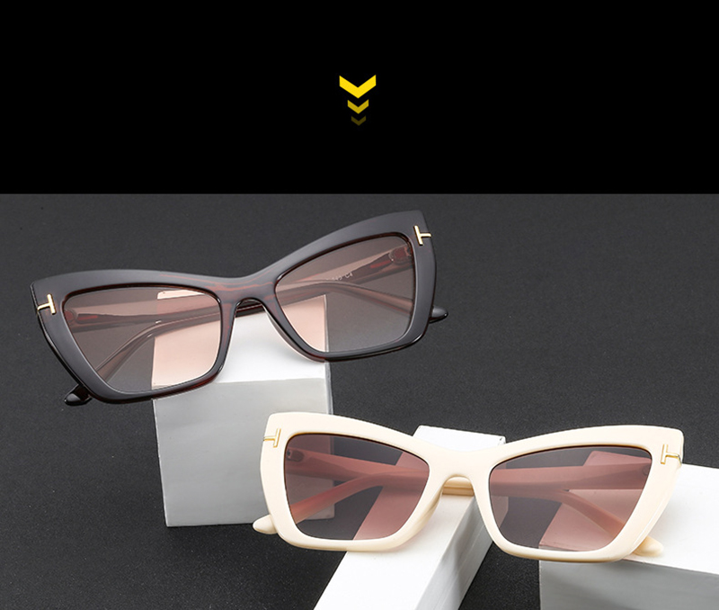 2019 New Arrival Brand Design Cat Eye Retro Women Sunglasses  Outdoor Plastic Ladies Sun Glasses