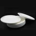 New Plates Biodegradable Plate New Arrival Disposable Bagasse Compostable Biodegradable Oval Plates Tableware
