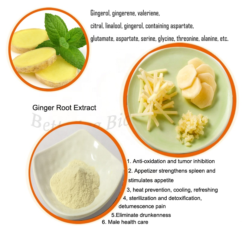 Pure natural plant extract dried ginger extract spices extract