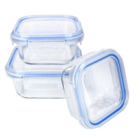 high borosilicate glass food containert box storage with high quality