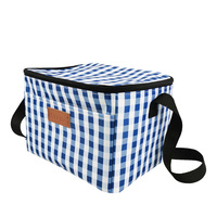 Chiterion Polyester Shoulder Strap Insulated Leakproof Soft Cooler Lunch Box Tote Bag for Food Delivery Camping Picnic Sports