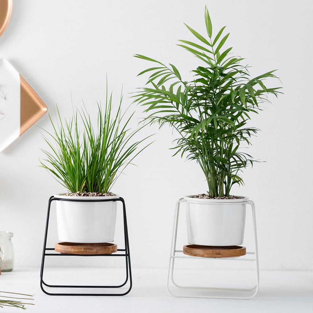 Sıcak satış küçük modern metal demir tel kapalı seramik çiçek saksı standı
