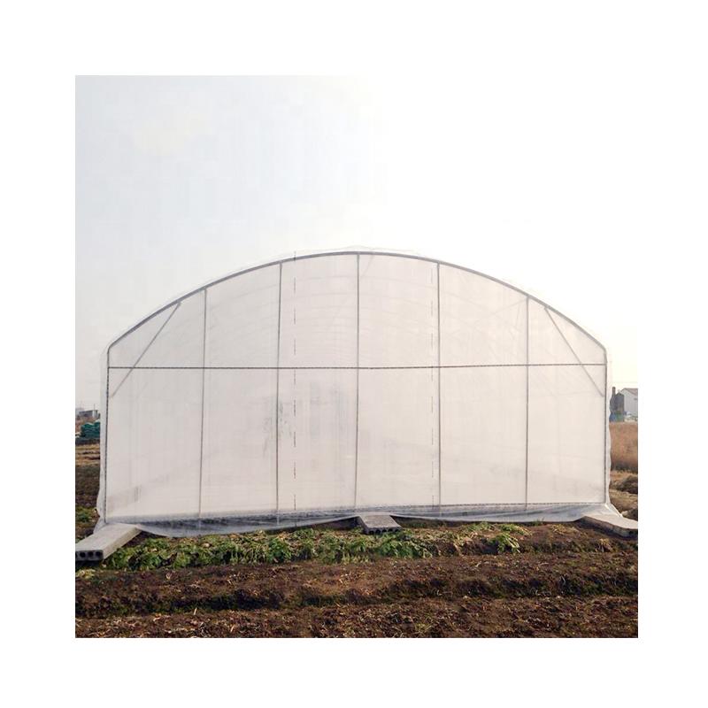 High quality tomato greenhouse poly film single tunnel single span greenhouse